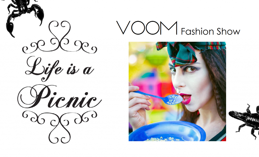 VOOM-FS-Life.is.a.Picnic